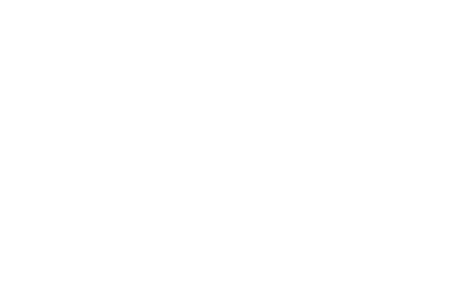 Donnelly Marketing Group White Logo